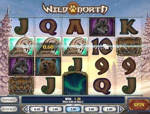 Призовая комбинация в игровом автомате Wild North