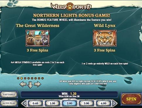 Правила фриспинов в онлайн слоте Wild North